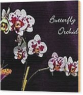 Butterfly Orchid Wood Print