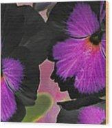 Butterfly Pansies Wood Print