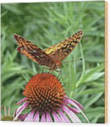Butterfly Pitstop Wood Print