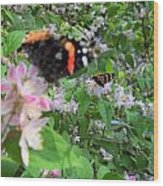 Butterfly Reflection Wood Print