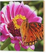 Butterfly Treat Wood Print