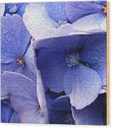 Butterfly Wing Blue Flowers Wood Print