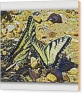 Butterlies At The Beach Wood Print