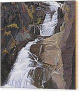 Buttermilk Falls Wood Print by Glen Heberling