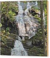Buttermilk Falls Nj Wood Print