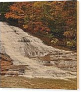 Buttermilk Falls Sate Park New York  Wood Print by Puzzles Shum