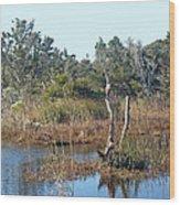Buxton Salt Marsh - Outer Banks Nc Wood Print