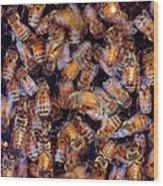 Buzz Wood Print