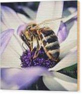 Buzz Wee Bees Wood Print