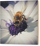 Buzz Wee Bees Lll Wood Print by Lessie Heape