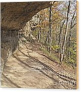 Buzzard Roost Rocky Trail Wood Print