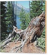 By Jenny Lake Wood Print