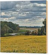 Bypass The Country Fields Wood Print