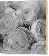 Cabbage Roses Wood Print