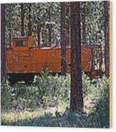 Cabin Car 2 Wood Print