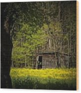 Cabin In The Flowers Wood Print