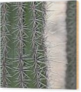 Cabo Cacti Before Wood Print
