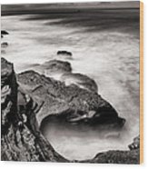 Cabrillo Tide Pool Wood Print