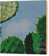 Cacti Junkie Wood Print