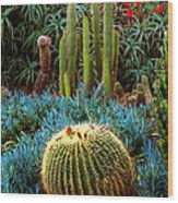 Cactus Gardens Wood Print