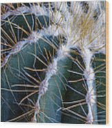 Cactus I Wood Print
