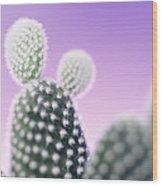 Cactus Plant Spines Wood Print