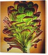 Cactus Time Wood Print