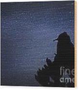 Cactus Wren In The Night Wood Print