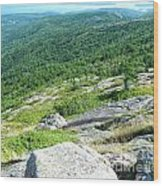 Cadillac Mountain Rocky View Wood Print