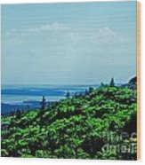 Cadillac Mt Mt Desert Island Me Wood Print
