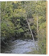 Cahaba River Shadows Wood Print