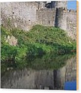 Cahir Castle, River Suir, County Wood Print