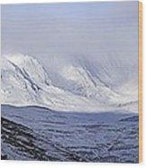 Cairngorms Plateaux, Scotland Wood Print