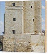 Calahorra Tower In Cordoba Wood Print