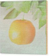 Calamondin Miniature Orange Wood Print by Peter Chadwick LRPS