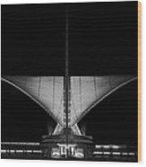Calatrava Dusk - B And W Wood Print