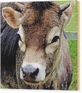 Calf Closeup Wood Print