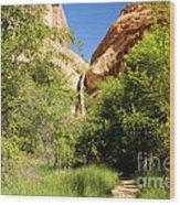 Calf Creek Falls Canyon Wood Print
