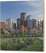 Calgary, Alberta, Canada Wood Print