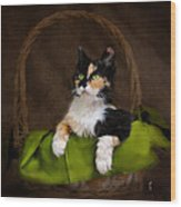 Calico Cat In Basket Wood Print