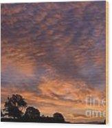 California Oaks And Sunrise Wood Print