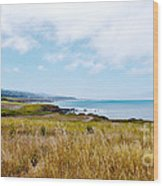 California Pacific Coast Highway - Forever Summer  Wood Print