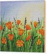 California Poppies Field Wood Print