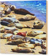 California Sunbathers . Harbor Seals Wood Print by Wingsdomain Art and Photography