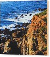 California Waterfront Wood Print