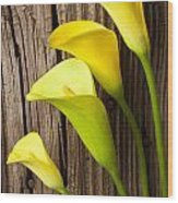 Calla Lilies Against Wooden Wall Wood Print by Garry Gay
