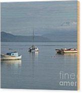 Calm Day At Port Douglas Wood Print