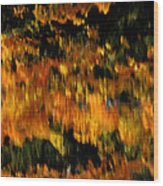 Calm Reflections Wood Print