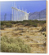 Calm Wind Palm Springs Wood Print