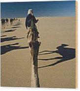 Camel Caravan And Their Shadows Wood Print by Carsten Peter